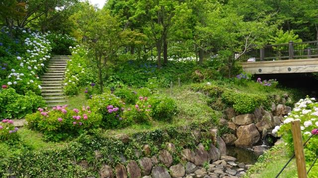 国営明石海峡公園33.JPG