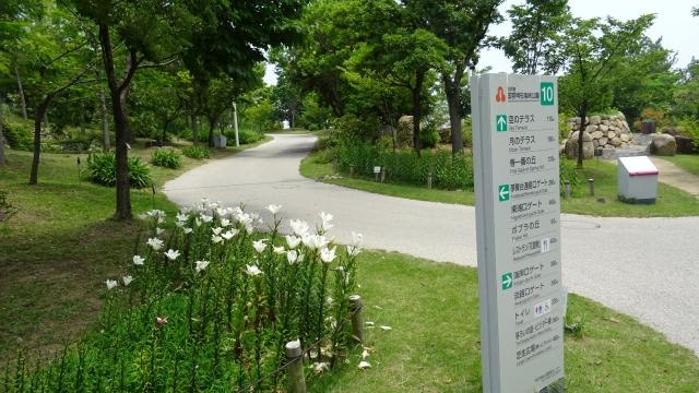 国営明石海峡公園40.JPG