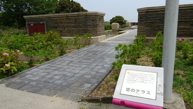 国営明石海峡公園42.JPG