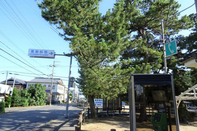 慶野11.JPG