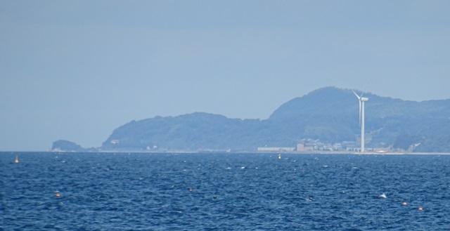 津井海岸8.jpg