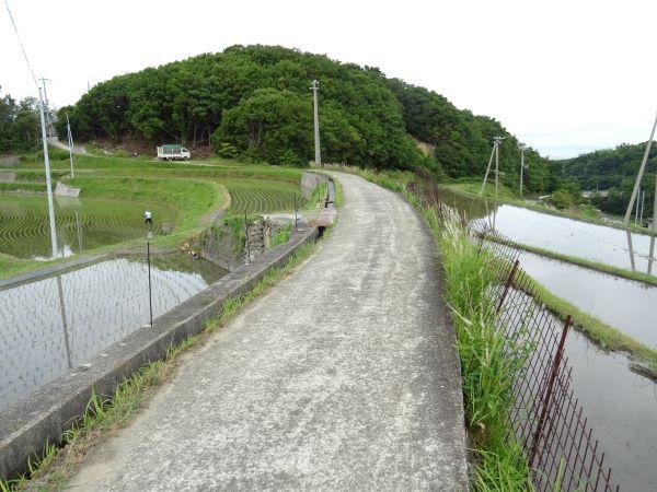石田の棚田2.JPG