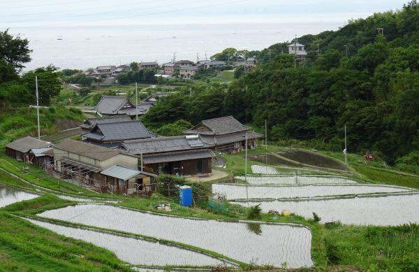 石田の棚田7.JPG