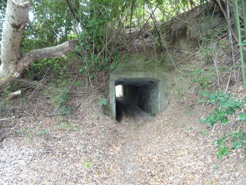 素掘りトンネル8.JPG