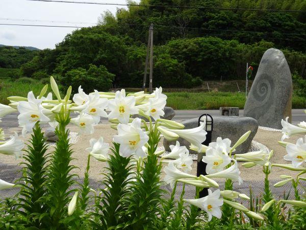 緑の道しるべ郡家公園13.JPG