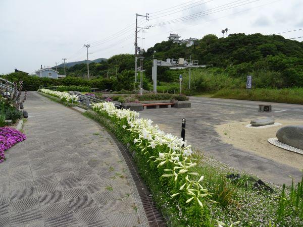 緑の道しるべ郡家公園16.JPG