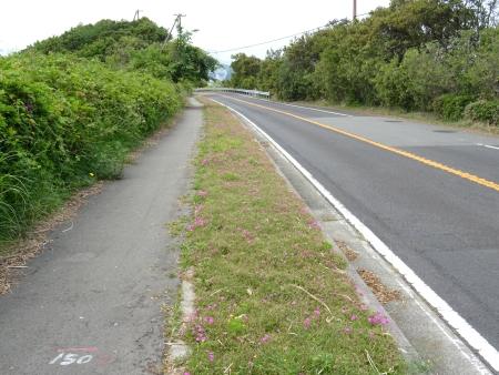 道の駅うずしお19.JPG