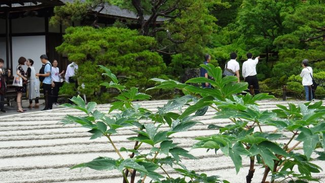銀閣寺1.JPG